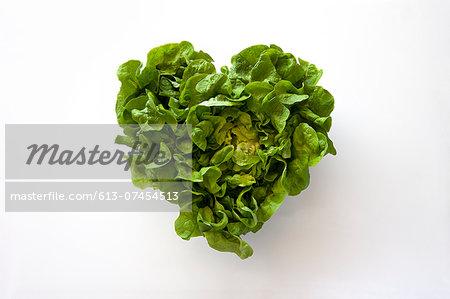 Heart-shaped formed by fresh Lettuce