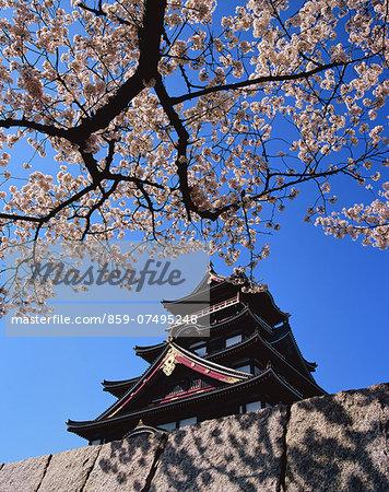 Fushimimomoyama Castle, Kyoto