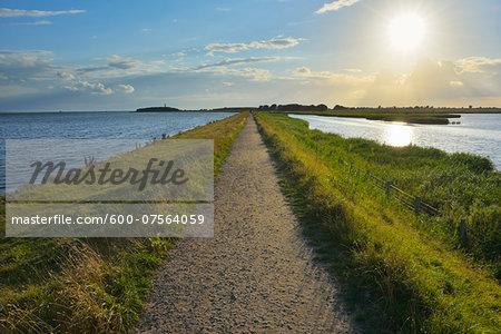 Dike Path, Sulsdorfer Wiek with Sun, Summer, Orth, Baltic Island of Fehmarn, Schleswig-Holstein, Germany