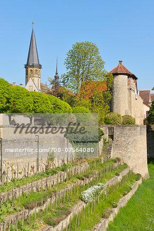 Weikersheim Castle Garden and St George Church in background, Weikersheim, Baden Wurttemberg, Germany