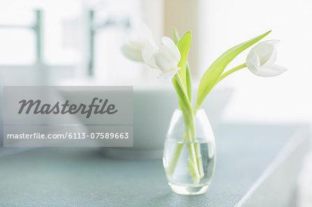 White tulips in bud vase in bathroom