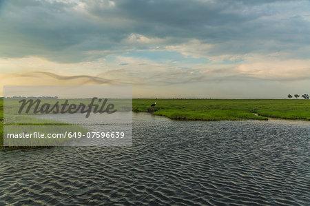 Water and grassland, Kasane, Chobe National Park, Botswana, Africa