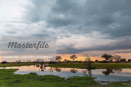 Silhouetted trees and swamp, Okavango Delta, Chobe National Park, Botswana, Africa