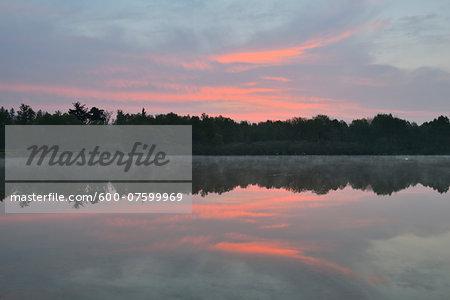 Lake Rothenbachteich at Dawn, Bermuthshain, Grebenhain, Vogelsberg District, Hesse, Germany