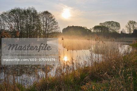 Fishing Pond at Sunrise, Gunzenau, Grebenhain, Vogelsberg District, Hesse, Germany