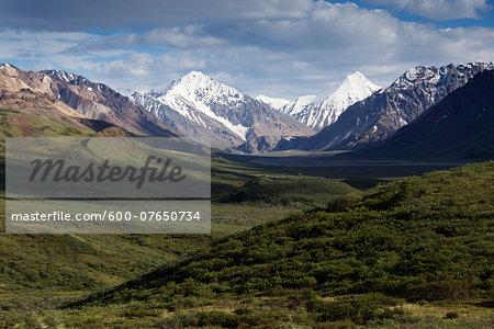 Landscape with Mountains, Denali National Park, Alaska, USA