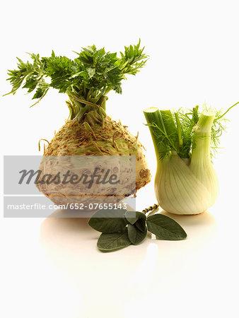 Celeriac,fenel and sage