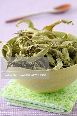 Bowl of verbana