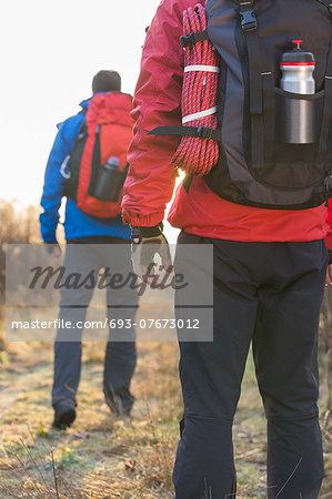 Rear view of male hikers in field
