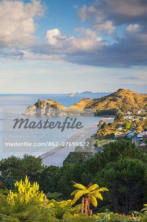 View of Hahei beach, Coromandel Peninsula, North Island, New Zealand