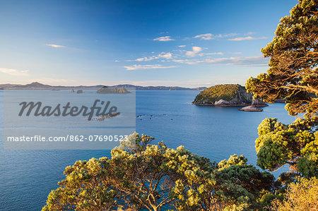 View of Cathedral Cove Marine Reserve (Te Whanganui-A-Hei) from Te Pare Point, Hahei beach, Coromandel Peninsula, North Island, New Zealand