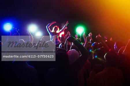 Audience enjoying music concert