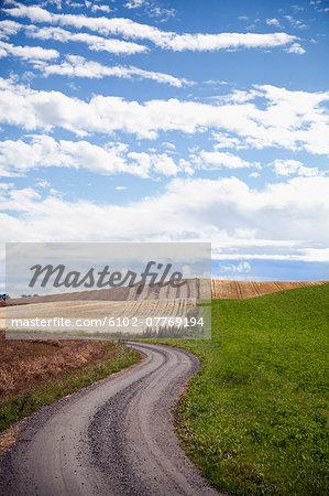 View of dirt road
