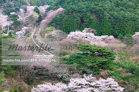 Ibaraki Prefecture, Japan