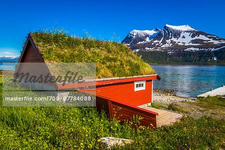 Fishermen's Hut with Grass Roof, Kvaloya Island, Tromso, Norway