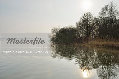 Morning scene at Lake Schwerin, Schweriner Innensee, Schwerin, Western Pomerania, Mecklenburg-Vorpommern, Germany