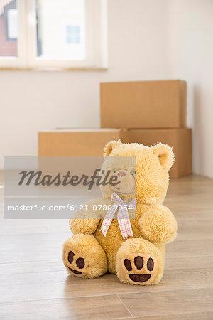 Teddy bear floor alone transport boxes