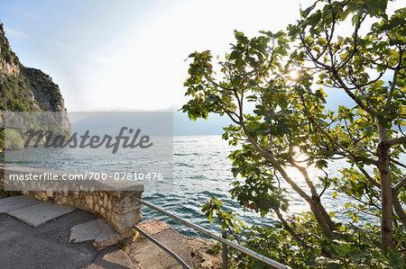 Autumn Landscape, Lago di Garda, Italy