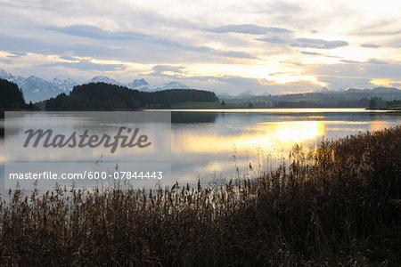 Lake at Sunrise, Illasbergsee, Halblech, Bavaria, Germany