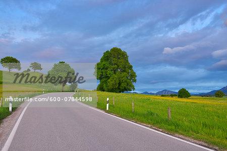 Country Road in Spring, Riegsee, Garmisch-Partenkirchen, Upper Bavaria, Bavaria, Germany
