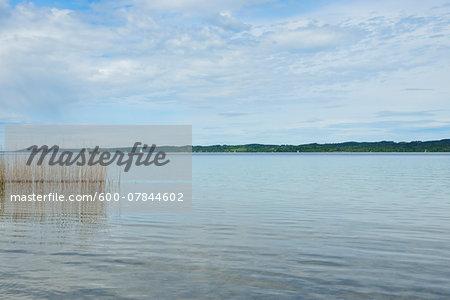 Starnberger See, Seeshaupt, Starnberger See, Upper Bavaria, Bavaria, Germany