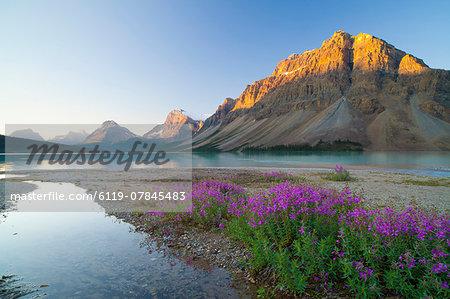 Bow Lake at sunrise, Banff National Park, UNESCO World Heritage Site, Alberta, Rocky Mountains, Canada, North America