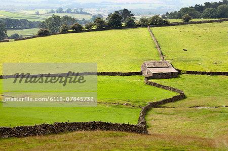 Field Barn and Dry Stone Walls in Crummack Dale, Yorkshire, England, United Kingdom, Europe
