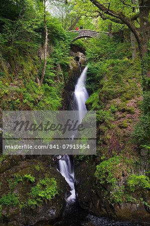 Aira Force, Ullswater, Lake District National Park, Cumbria, England, United Kingdom, Europe
