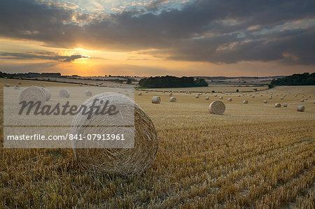 Round hay bales at harvest with sunset, Swinbrook, Cotswolds, Oxfordshire, England, United Kingdom, Europe