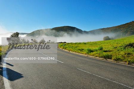 Country Road with Morning Mist, Weiler-Boppard, Boppard, Rhein-Hunsruck-Kreis, Rhineland-Palatinate, Germany