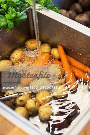Vegetables in sink