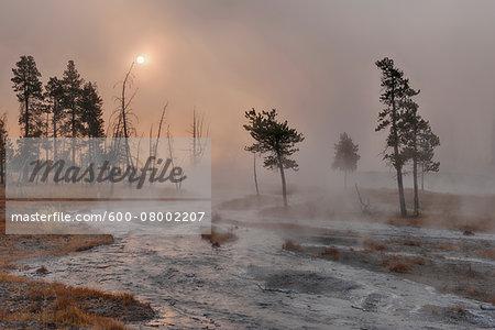 Small Stream with Rising Steam near Sunrise, Firehole Lake Drive, Yellowstone National Park, Wyoming, USA