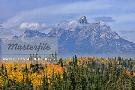 Teton Range with Grand Teton and Trees in Autumn Foliage in foreground. Grand Teton National Park, Wyoming, USA