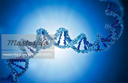 DNA, illustration