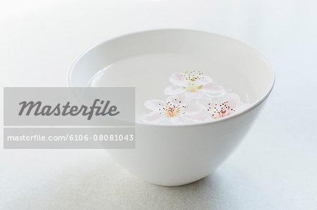ssoms floating in white bowl on white