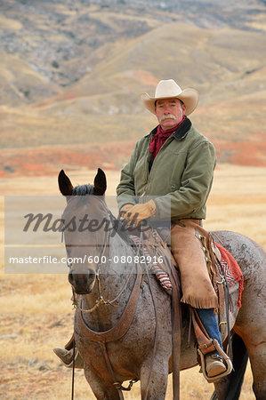 Cowboy Riding Horse, Shell, Wyoming, USA
