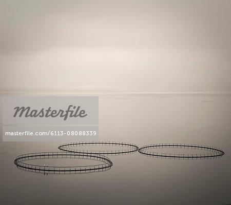Salmon farm rings floating on calm water, Faroe Islands