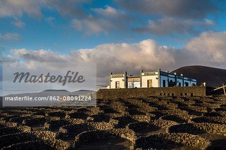 Bodega La Geria, wine region La Geria, Lanzarote, Canary Islands, Spain