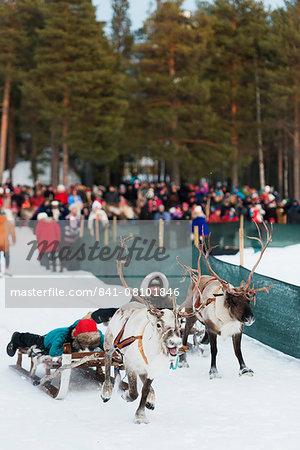 Sami people at winter festival, reindeer race, Jokkmokk, Lapland, Arctic Circle, Sweden, Scandinavia, Europe