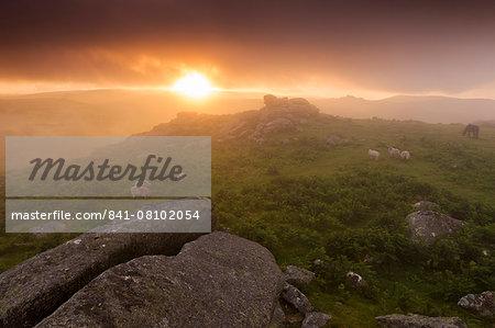Misty summer sunset at Holwell Tor in Dartmoor National Park, Devon, England,United Kingdom, Europe