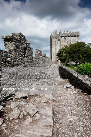Blarney Castle, County Cork, Republic of Ireland