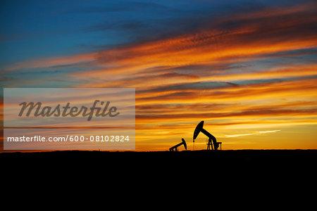 Pump Jacks in Oilfield, Saskatchewan, Canada
