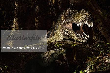 Tyrannosaurus rex, computer illustration.