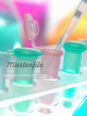 Pipette adding sample to eppendorf tube in a laboratory