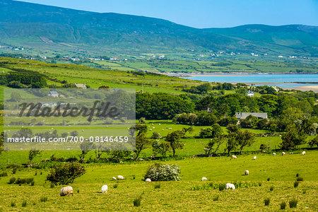 Scenic overview, near Kilcummin, County Kerry, Ireland