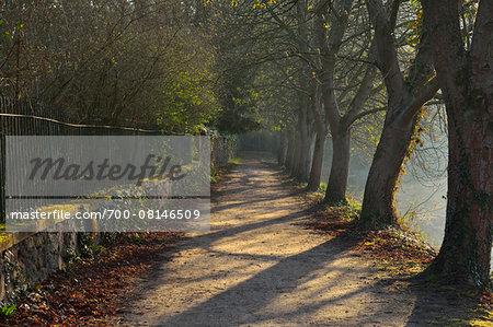 Bank Path with Chestnut Trees, Backhausteich, Jagdschloss Kranichstein, Darmstadt, Hesse, Germany