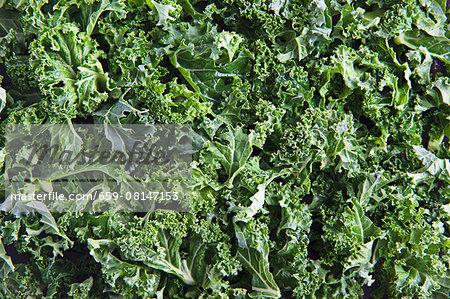 Fresh kale (full frame)