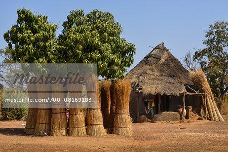 Reed bundles in front of house, near Banfora, Comoe Province, Burkina Faso
