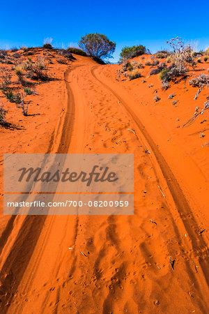Dirt Road, Uluru-Kata Tjuta National Park, Northern Territory, Australia