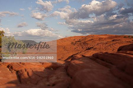 View of petrified dune, Snow Canyon State Park, Utah, USA